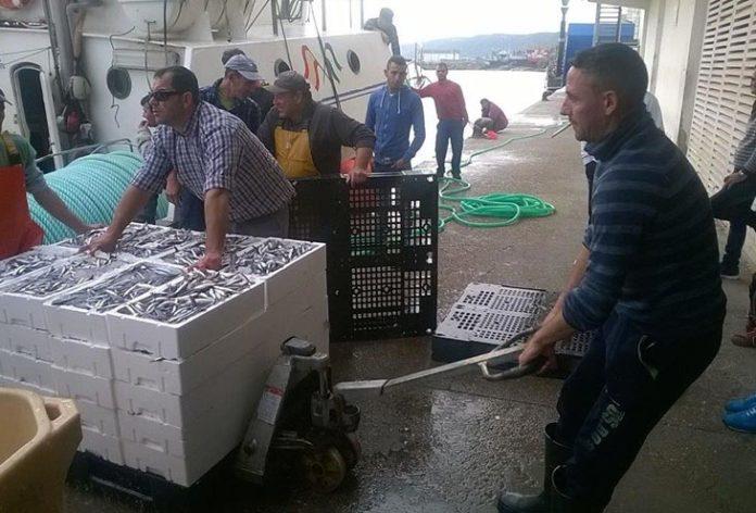 Pedro Maza. Cuotas de pesca